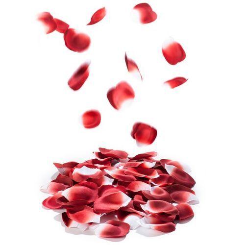 Explosión de pétalos de rosa Les Petits Bonbons 4