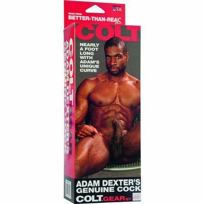 Dildo realistico Adam Dexter 2